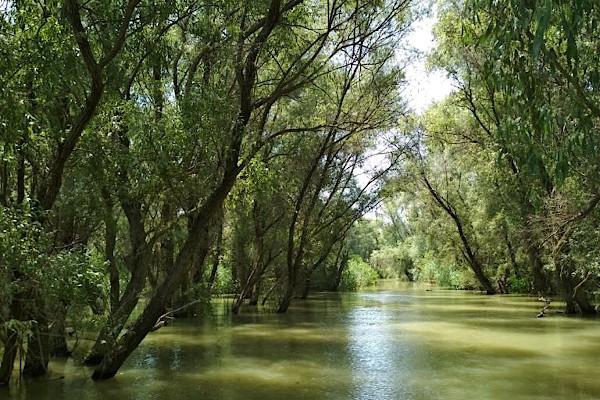 Подучавање у Европи: Криза у вези са залихама воде за пиће